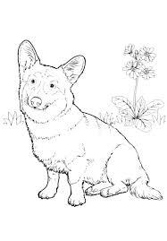 Disegni Da Colorare Di Cani Con Disegni Di Cani Da Stampare E Cani