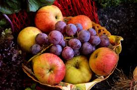 Mini swap - Mangeons des fruits ! - Page 3 Images?q=tbn:ANd9GcQ27dystAb486giBNHbePh4gHAABUtnBTfyuFGug6KxaASmjh3K2g