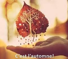 """Résultat de recherche d'images pour """"c est l automne"""""""