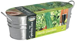 Unwins Kitchen Garden Herb Kit Mr Fothergills 24804 Garden Time Herb Garden Windowsill Kit