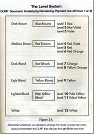 Hair Color Level Chart Lusual Com
