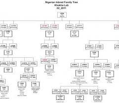 Genetic Family Tree Genetic Family Tree Template Upaspain