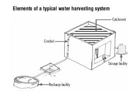 essay on rain water harvesting rainwater harvesting thesis essay rain water harvesting history essay hubpages rainwater harvesting thesis essay rain water harvesting history essay