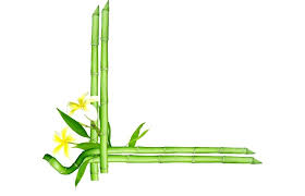 bamboo picture frames clip art frame style frame made of bamboo