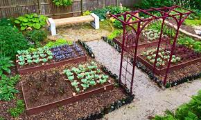 small vegetable garden designs