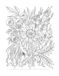 Lovely Coloring Pages Adults 78 With Additional Line Drawings with ...