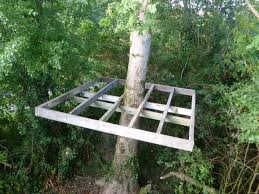 simple treehouse. Incredible Decoration Tree House Plans For Kids Best 25 Simple Ideas On Pinterest Diy Treehouse V