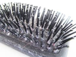 a typical english home how to clean hair brushes bake up brushes great tips to keep your beauty tools keeping you beautiful