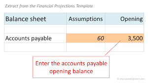 Enter Accounts Payable Opening Balance Plan Projections