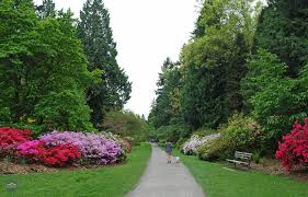 Small Picture Unique Seattle Botanical Garden The Elisabeth C Miller Botanical
