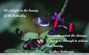 Quotes About Life And Love By Unknown Authors With Beauty 32 8