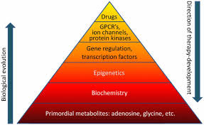 articles related to biochemistry in silico identification of novel  frontiers the biochemistry and epigenetics of epilepsy focus on frontiersin org