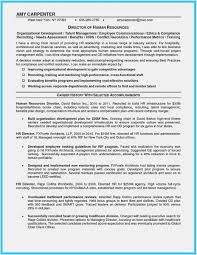 Resume Writers Nyc Build Your Own Resume Ideas Free Resume Templates