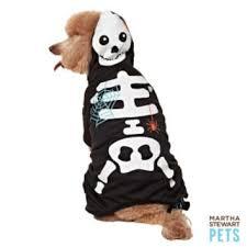 Martha Stewart Pets Glow Skeleton From Pet Smart