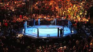 Reddit UFC Stream: Where To Watch UFC 260 Live Stream & Matches Tonight &  Why is MMA Reddit Streams Banned?