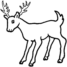 Small Picture Coloring Pages Of Deer Picture Coloring Page 8212