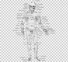 Marma Points Chart Marma Points Of Ayurveda The Energy Pathways For Healing