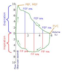 Pft Test Results Chart Spirometry Wikipedia