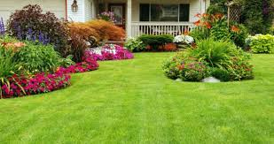 Small Picture amazing house landscaping ideas landscaping ideas designs pictures