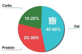 Diabetes Pie Chart Low Carb Pie Chart For Type 2 Diabetes Diabetes Meal Plans