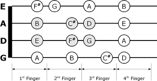 Chart D Violin Fingering Chart