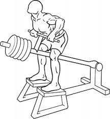 Rug oefeningen fitness