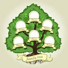 Genealogical Family Tree On Gray Background Family Tree In Vintage