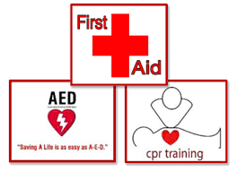 Image result for ashi online cpr aed and first aid