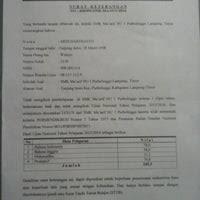 Bolehkah pengurus yayasan menerima gaji, upah atau honorarium? Pt Mitsuba Indonesia Tangerang Banten