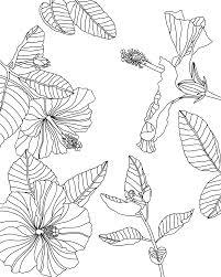 3 Free Adult Coloring Pages Digital Or Printable Liz Kohler Brown