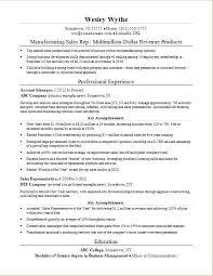 Sales Experience Resume It Sales Resume Sales Experience Resume