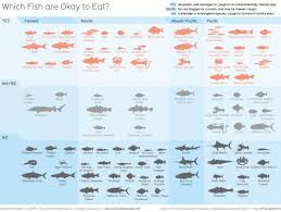 Overfishing Which Fish To Eat Chart Images 558x421 Plenty