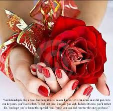 Beautiful Roses With Friendship Quotes Best of Rose Flower Rose Flower Quotes In Hindi
