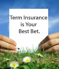 40 Best Term Life Insurance Quotes And Sayings QuotesBae Beauteous Term Life Ins Quote