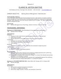 Bunch Ideas Of Bank Relationship Manager Resume For Banking