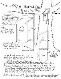 ideas owl house plans and great horned owl house plans fresh barred owl house plans 2