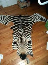 brown zebra rug zebra rug real brown white antelope skin target in designs ivory animal rugs brown zebra rug