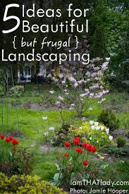 Next Level Landscaping Home Design Looking For Head Turning Landscaping For Your Home On A
