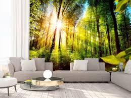 Fotobehang Forest Hideout Bos En Bomen Landschappen Fotobehang