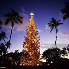 Christmas Hawaiian Style U2013 Orange County RegisterChristmas Tree Hawaii