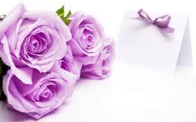 Roses Flowers Wallpapers Rose Flowers Wallpapers Barca Fontanacountryinn Com