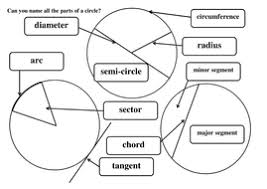 Label Parts Of A Circle By Maths Tiger - Teaching Resources - Tes