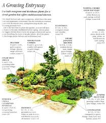 Small Picture Best 25 Evergreen landscape ideas on Pinterest Privacy