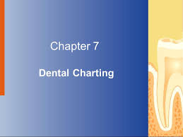 Chapter 7 Dental Charting Ppt Video Online Download