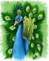 Indian Peacock Design The Indian Peacock By Prasadesign The 4th Digital Painting