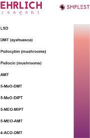 Ehrlich Reagent Testing Kit For Drug Checking Smplest