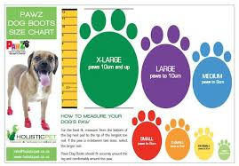 64 Punctual Dog Foot Size