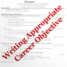 a e fe df c aad de f  cdba job objectives career objectives    career objectives for resume