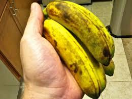 Mini Bananas Keep It Up David
