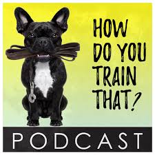 Podcast – How Do You Train That?